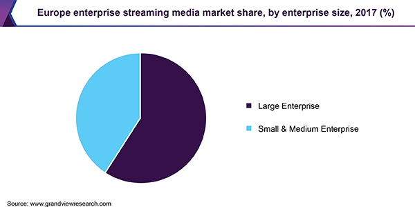 Europe enterprise streaming media market share, by enterprise size, 2017 (%)