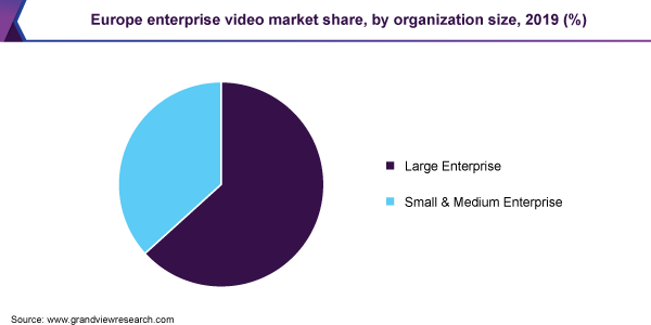 Europe enterprise video market share, by organization size, 2019 (%)