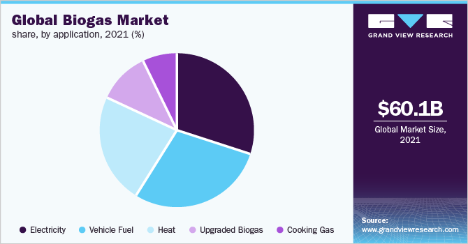 Global biogas market share