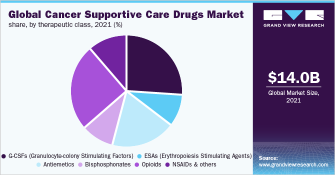 Global Cancer Supportive Care Drugs Market