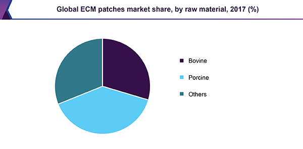 Global ECM patches market share, by raw material, 2017 (%)