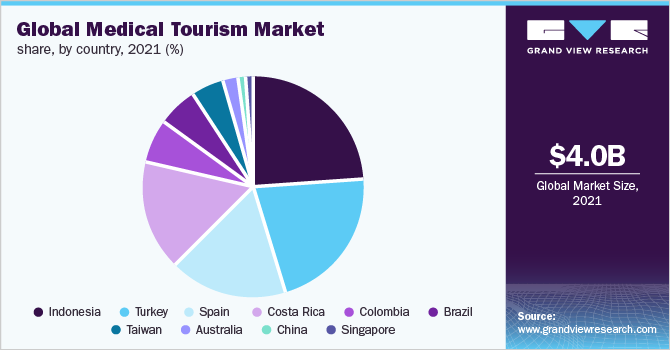 Global medical tourism market share, by country, 2016 (%)