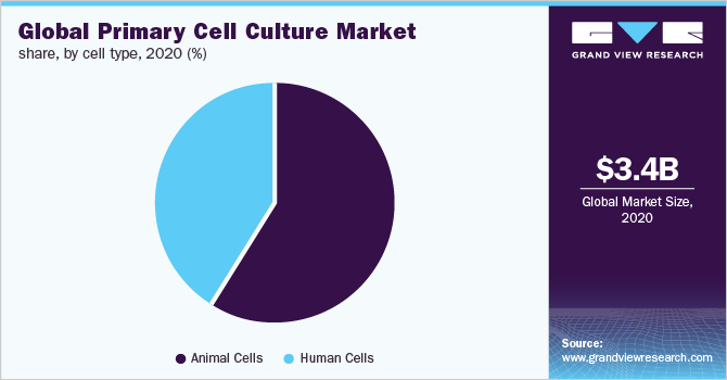 Global primary cell culture market