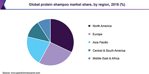 Global protein shampoo market share, by region, 2018 (%)