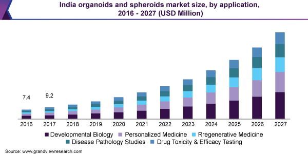 India organoids and spheroids market size
